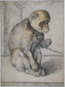 chain-monkey-wikipedia-1